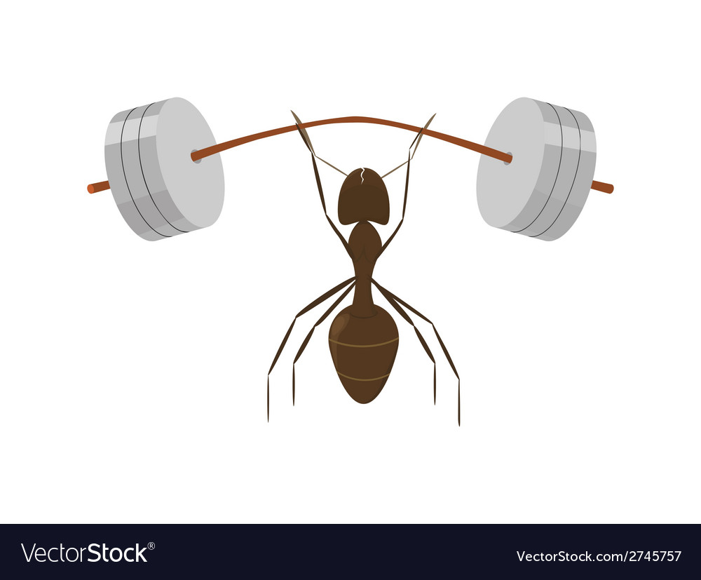 Little ant vector | Price: 1 Credit (USD $1)