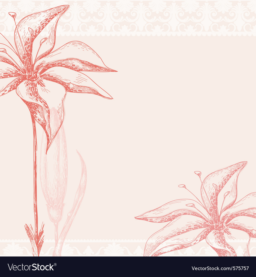 Ornate floral background vector | Price: 1 Credit (USD $1)