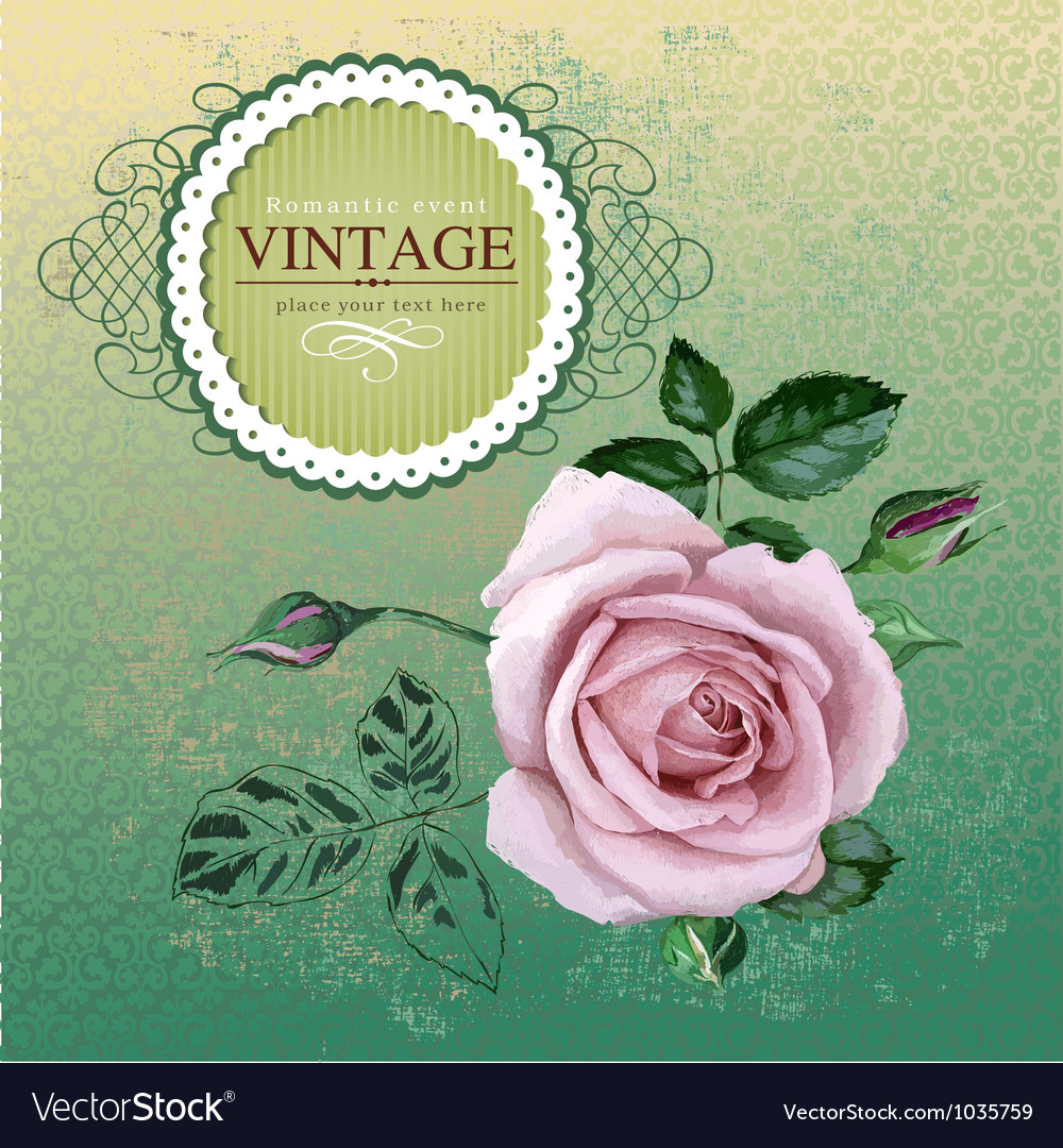 Vintage border with rose vector | Price: 1 Credit (USD $1)
