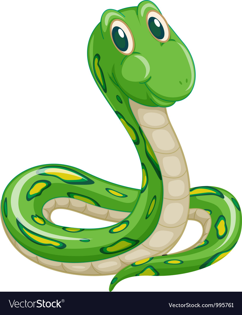 Cartoon snake vector | Price: 3 Credit (USD $3)