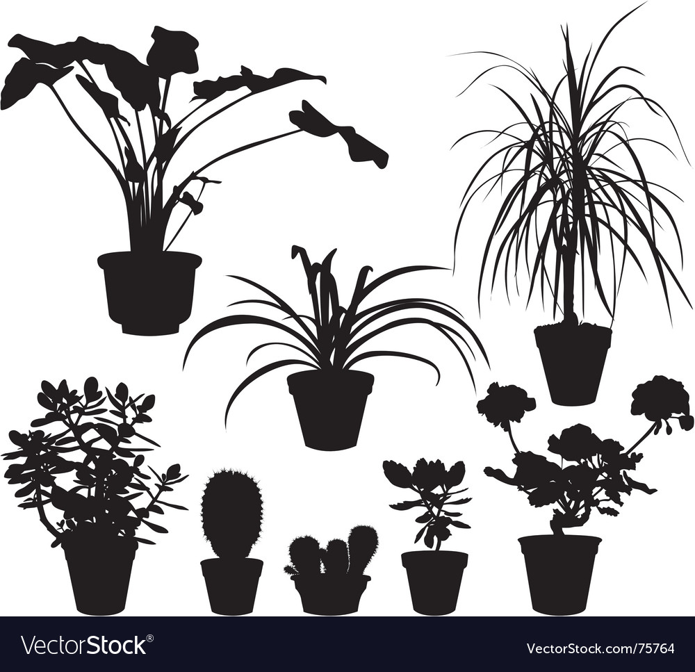 Home plants silhouettes vector | Price: 1 Credit (USD $1)
