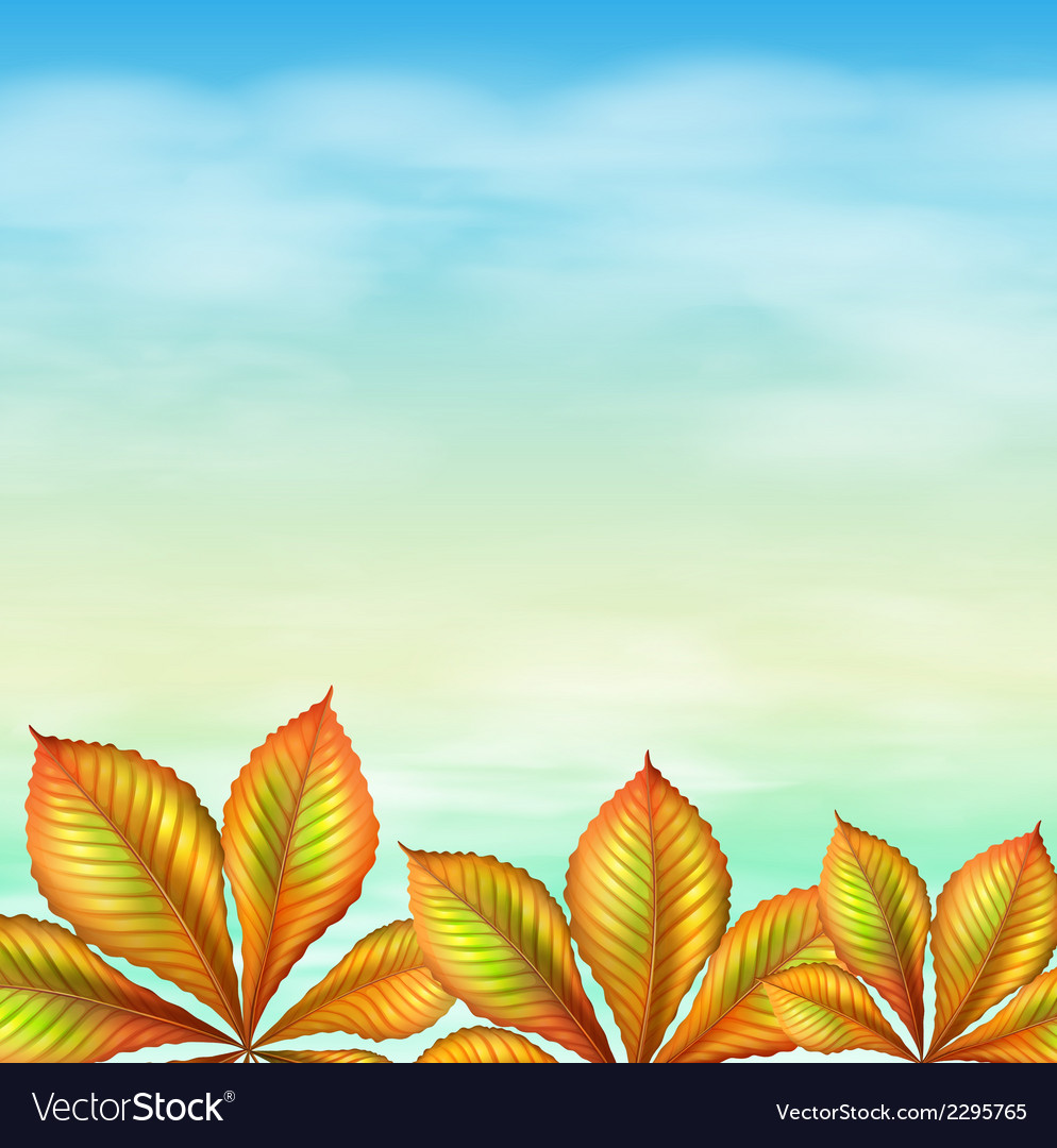 A blue sky and the leafy plants vector   Price: 1 Credit (USD $1)