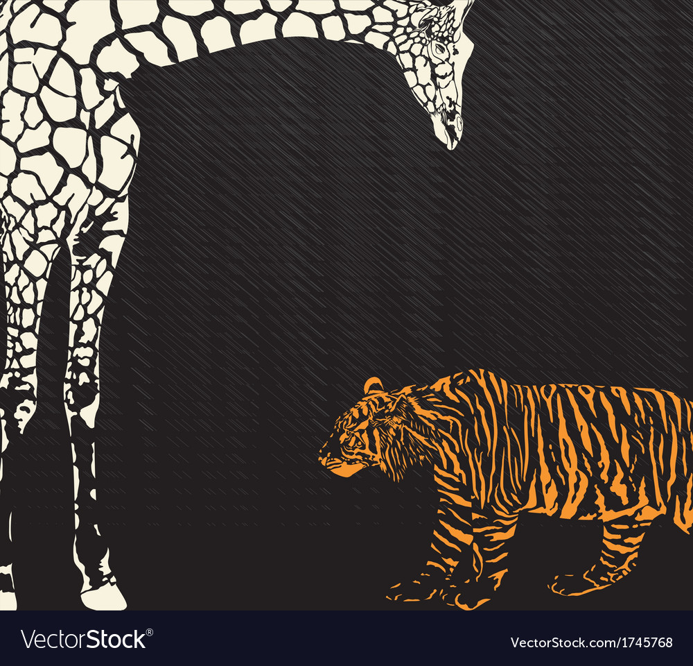 Inverse tiger and giraffe camouflage vector | Price: 1 Credit (USD $1)