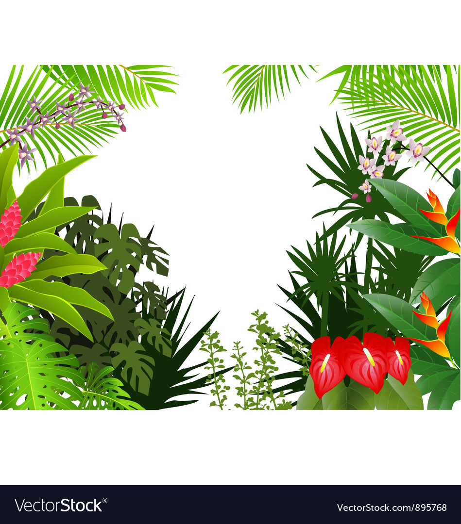 Tropical forest background vector | Price: 1 Credit (USD $1)