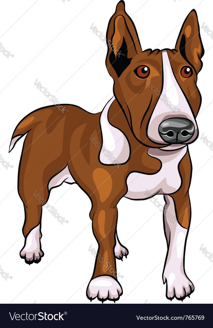 Bull terrier dog vector | Price: 1 Credit (USD $1)