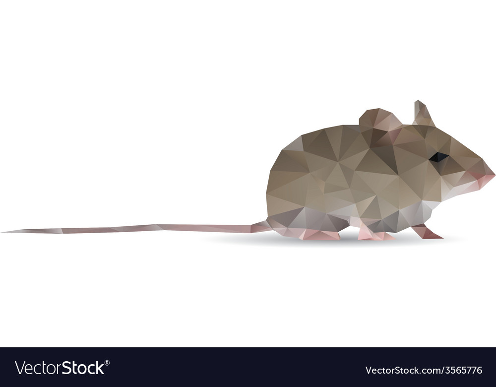 Abstract rat vector | Price: 1 Credit (USD $1)