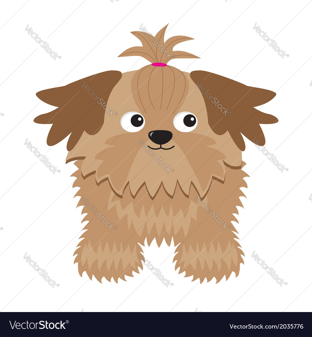 Little glamour tan shih tzu dog isolated vector | Price: 1 Credit (USD $1)