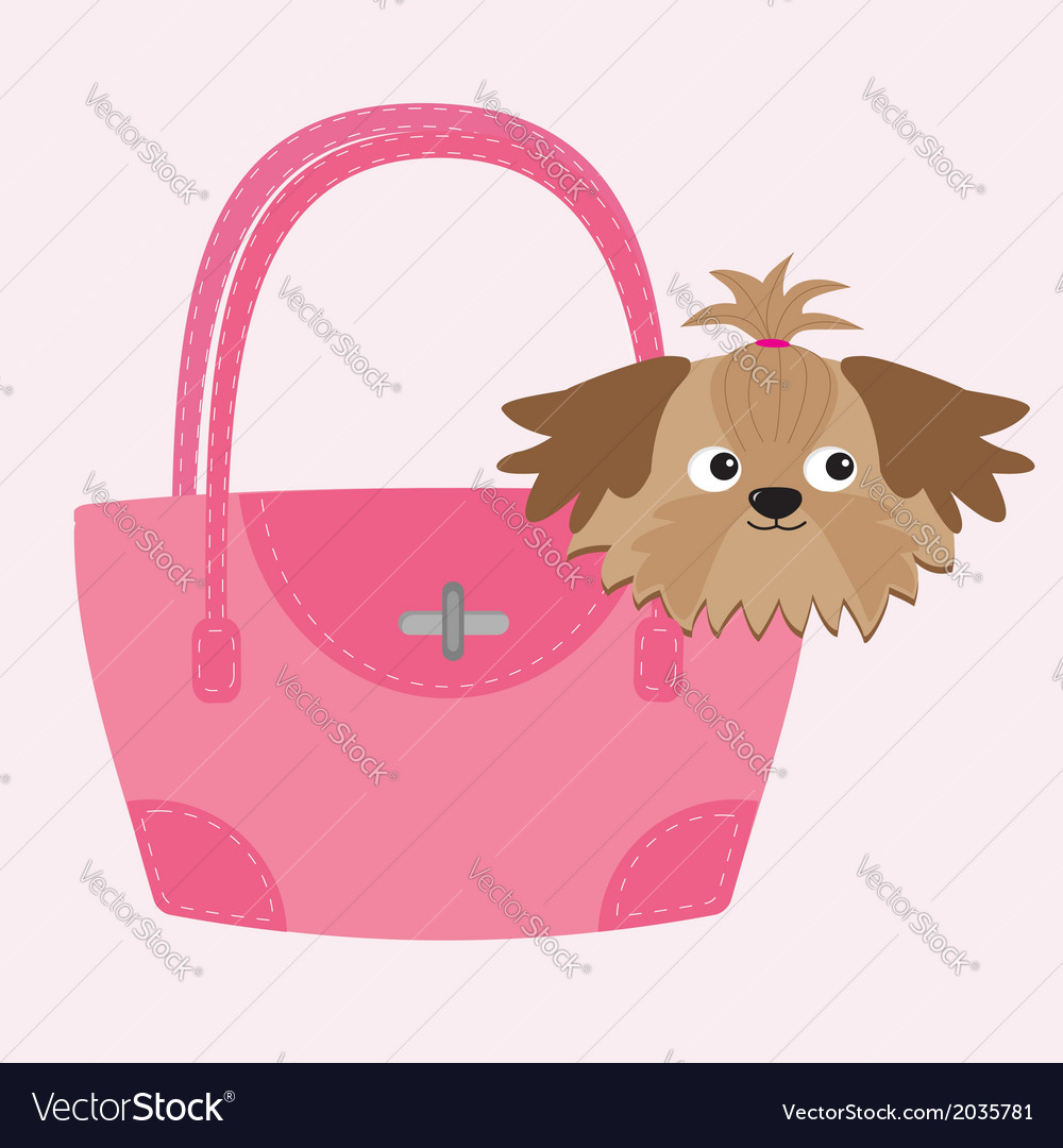 Little glamour tan shih tzu dog in the pink bag vector | Price: 1 Credit (USD $1)