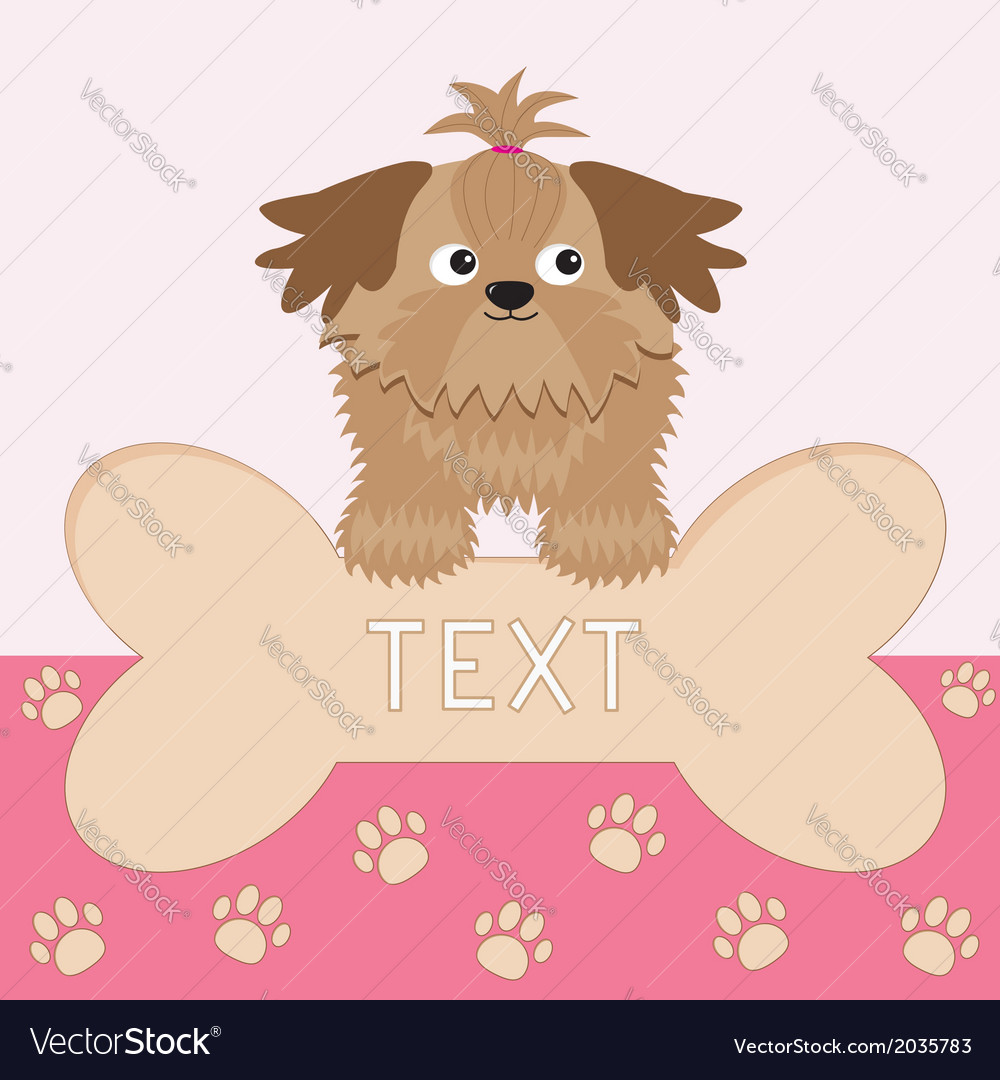 Little glamour tan shih tzu dog and big bone card vector | Price: 1 Credit (USD $1)