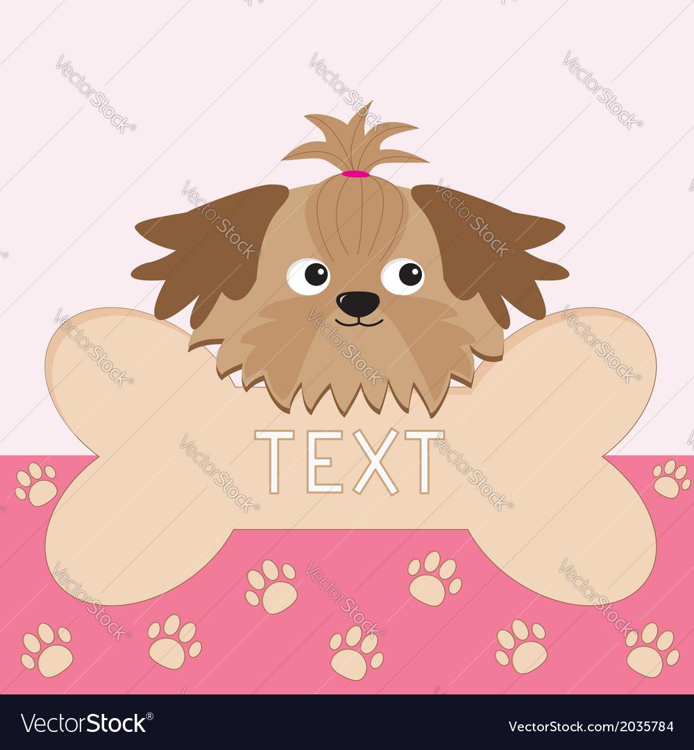 Little glamour tan shih tzu dogs head and big bone vector | Price: 1 Credit (USD $1)