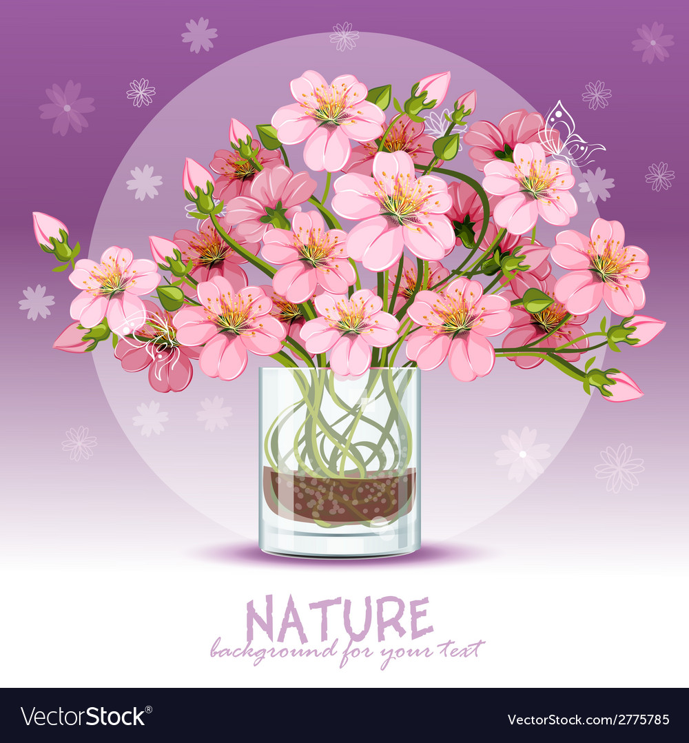 Background with cherry blossom in a glass vector | Price: 1 Credit (USD $1)