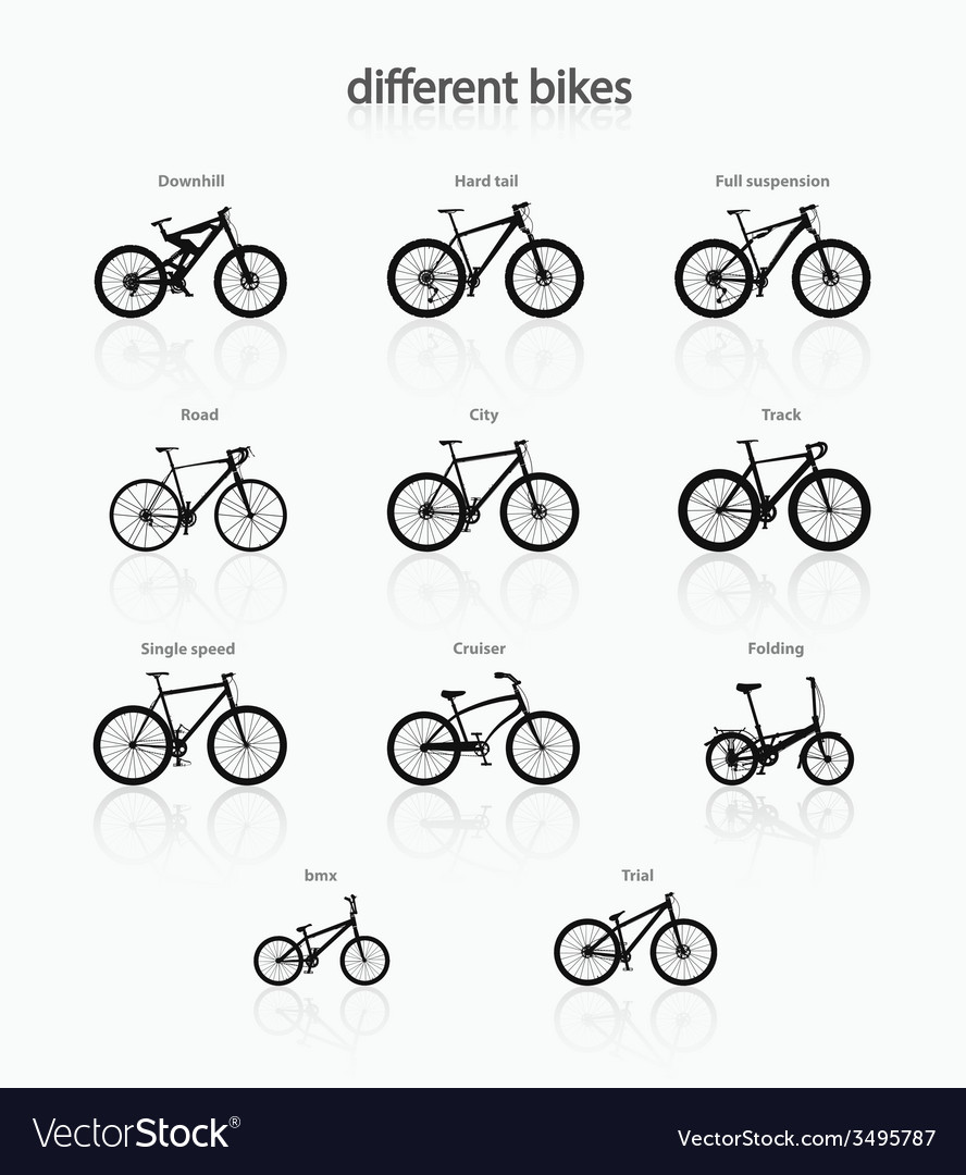Different bikes vector | Price: 1 Credit (USD $1)