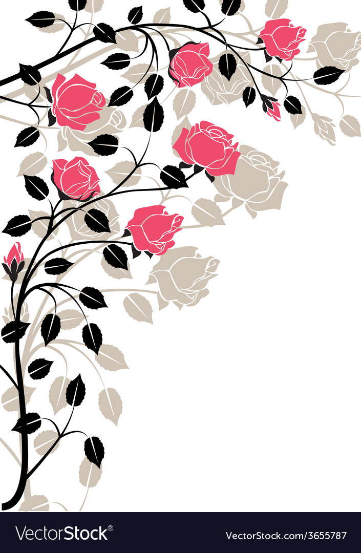 Flourishes-in-black-and-pink vector | Price: 1 Credit (USD $1)