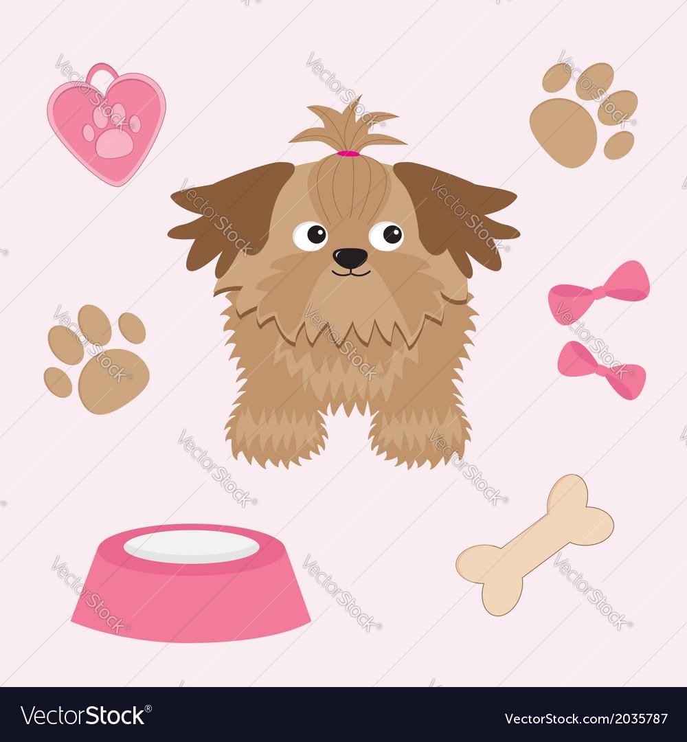 Little glamour tan shih tzu and dog stuff vector | Price: 1 Credit (USD $1)