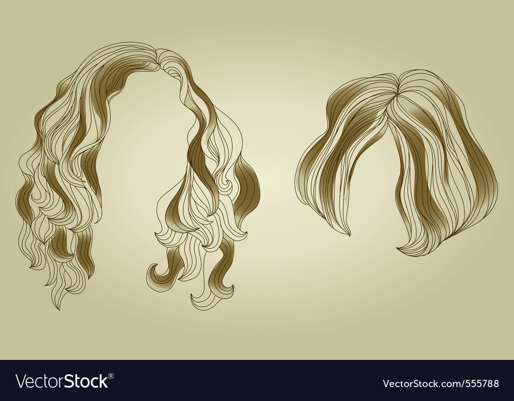 Hair styling for woman vector | Price: 1 Credit (USD $1)