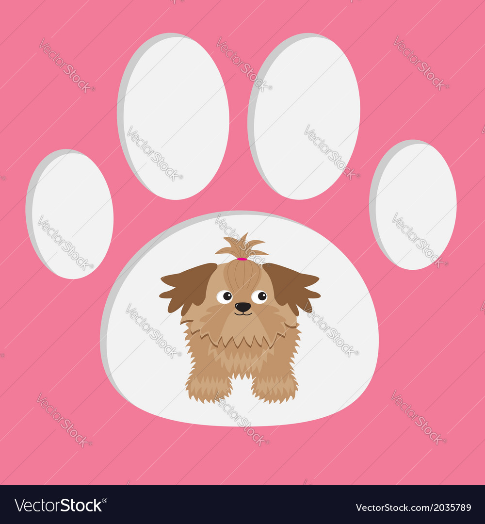 Little glamour tan shih tzu dog in the paw print c vector | Price: 1 Credit (USD $1)