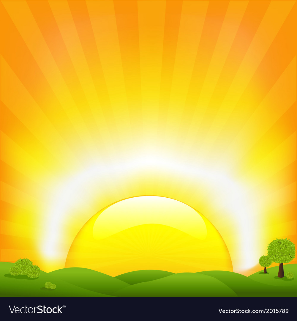 Sunset and field vector | Price: 1 Credit (USD $1)