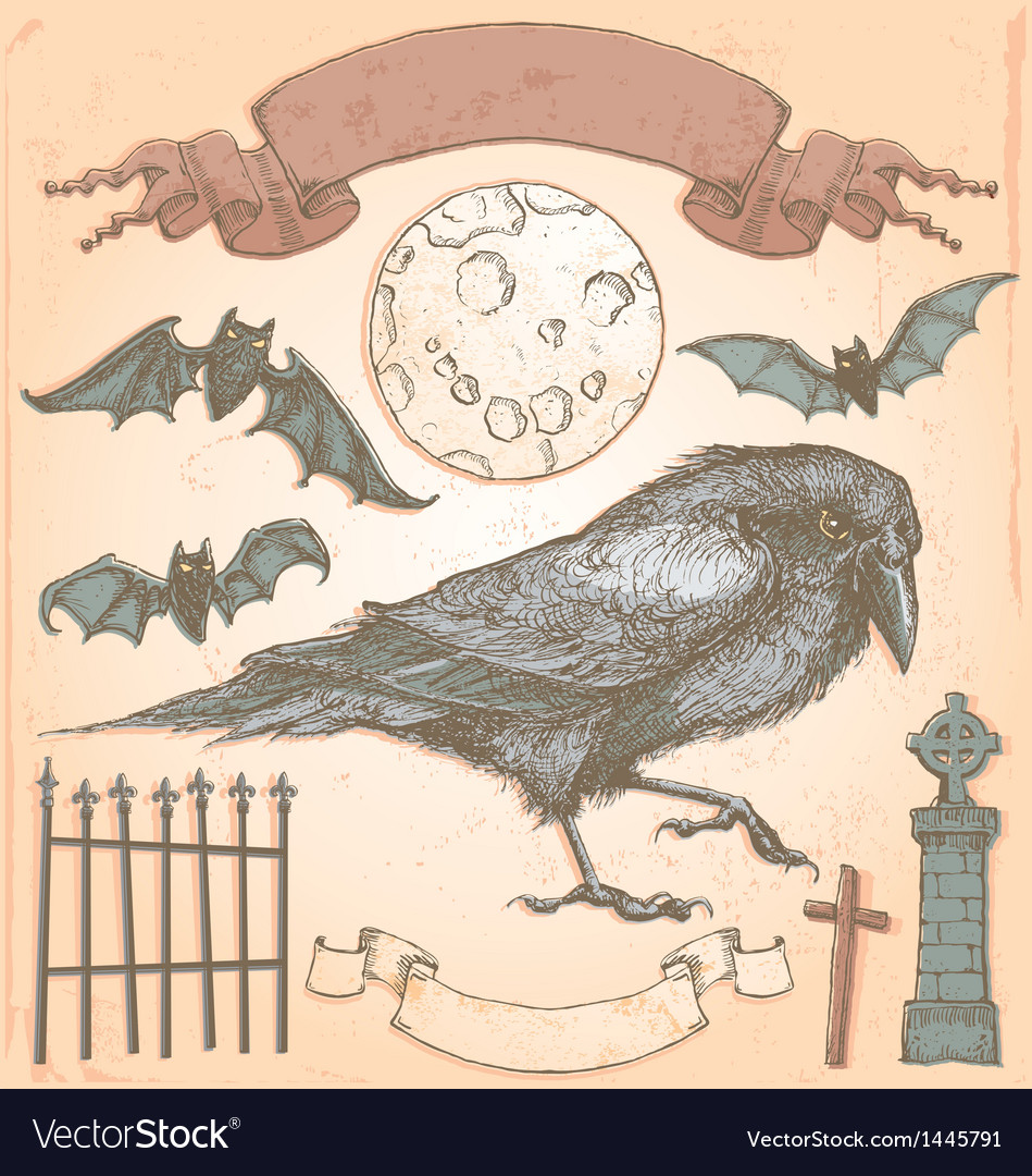 Hand drawn vintage halloween crow set vector | Price: 3 Credit (USD $3)
