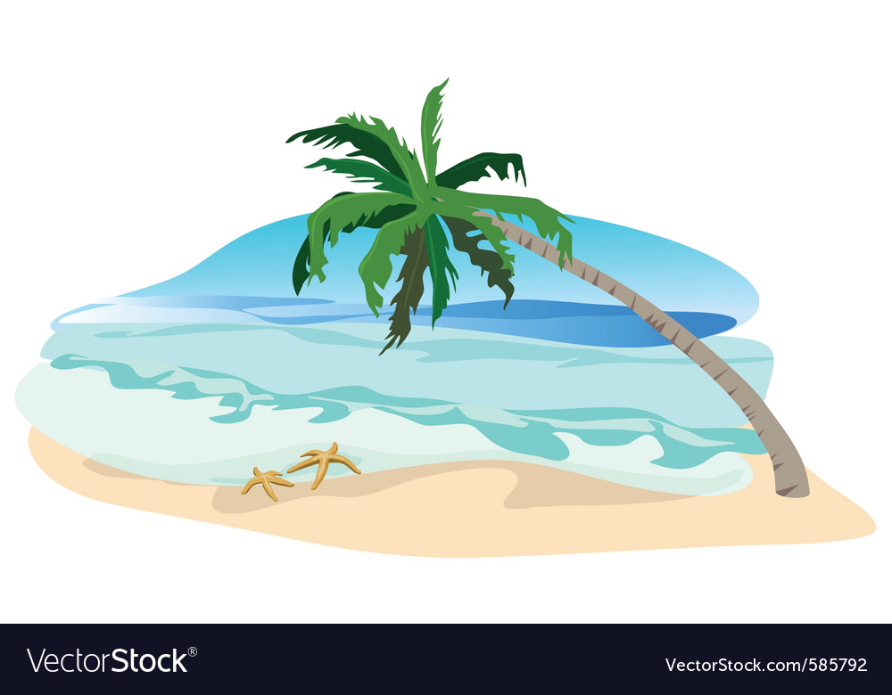 Beach palms vector | Price: 1 Credit (USD $1)