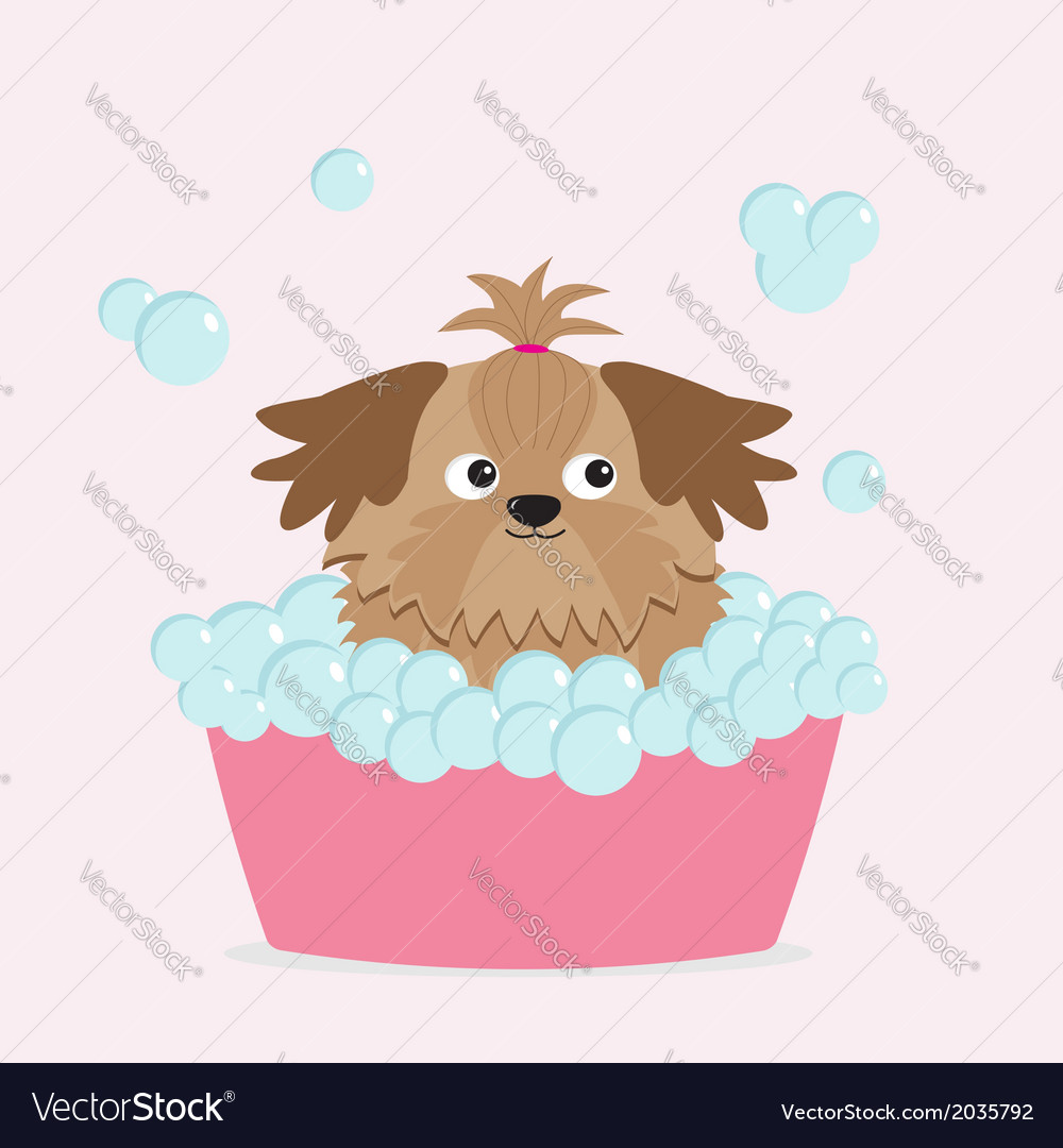 Little glamour tan shih tzu dog taking a bubble ba vector | Price: 1 Credit (USD $1)