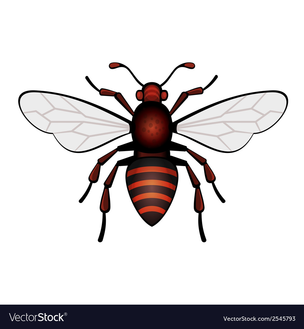 Red bee icon vector | Price: 1 Credit (USD $1)