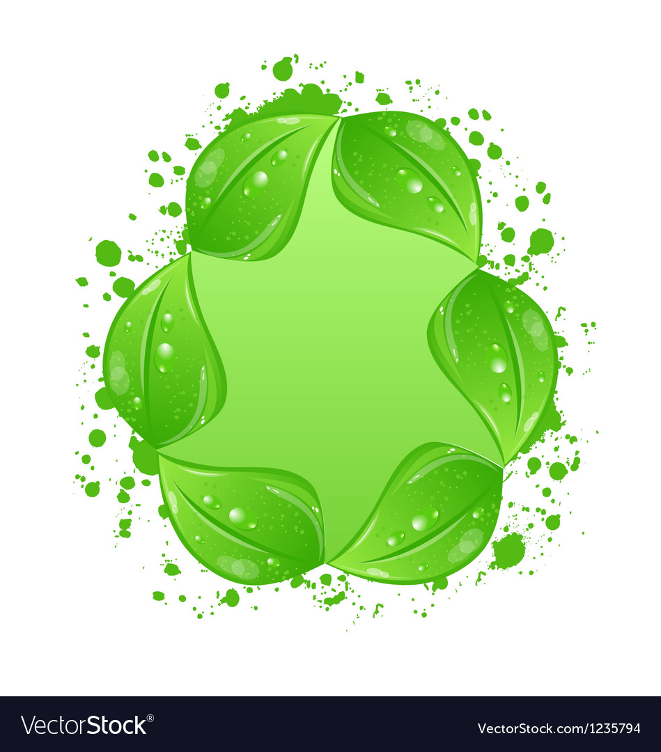 Green eco leaves label isolated on white vector | Price: 1 Credit (USD $1)