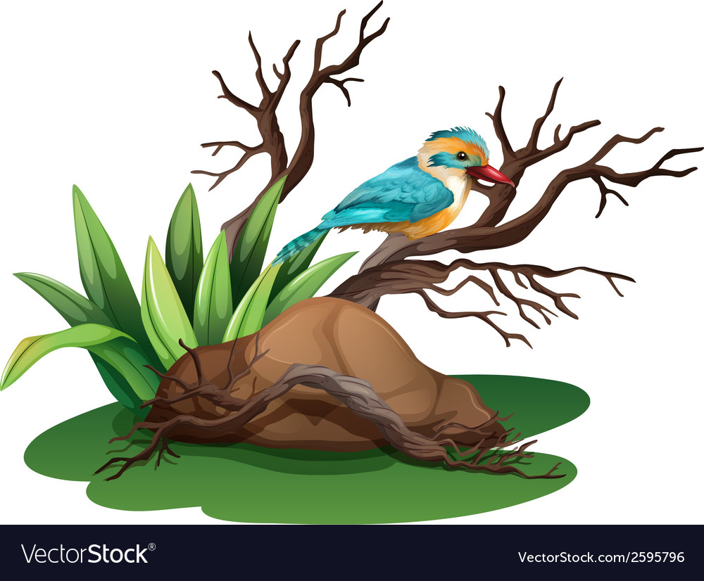 A bird at the branch of a tree vector | Price: 3 Credit (USD $3)