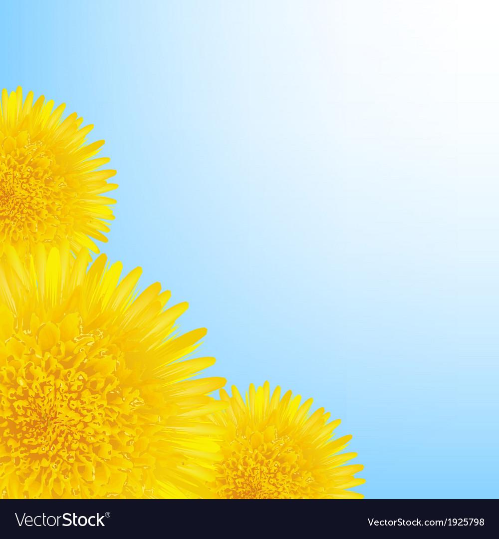 Flowers dandelion border vector   Price: 1 Credit (USD $1)