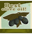 Vintage olive branch background vector