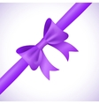 Big shiny purple bow and ribbon on white vector