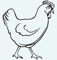Figure chicken vector