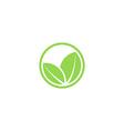 Circle mockup eco logo green leafs of plant vector