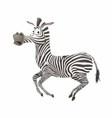 Zebra fun vector