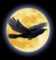 Black raven vector