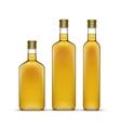 Set of olive or sunflower oil glass bottles vector