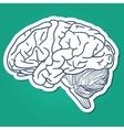 Anatomical brain human organ vector