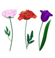 Set realistic flowers vector