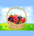 Basket full of fruits on green meadow - vector