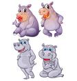 Four hippopotamus vector