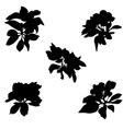 Apple flowers silhouettes vector