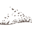 Florals and butterflies black background vector