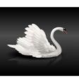 White swan on black water vector