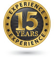 15 years experience gold label vector