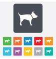 Dog sign icon pets symbol vector