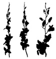 Long orchids silhouettes vector