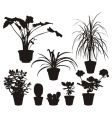 Home plants silhouettes vector