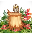 Cute owl sitting on stump surrounded by toadstools vector
