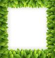 Leaves frame vector