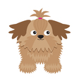 Little glamour tan shih tzu dog isolated vector