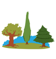 Group of trees vector